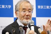 کشف دانشمند ژاپنی؛