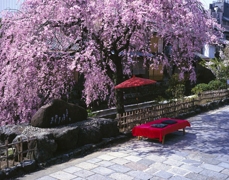 فرهنگ پرهیزگاری ژاپنیها